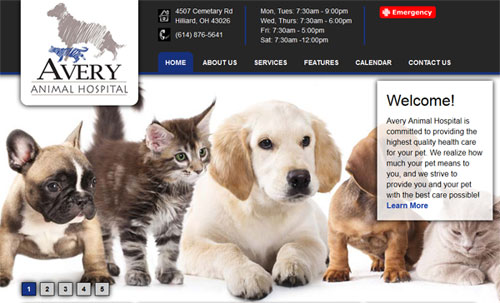 Avery animal hospital website homepage