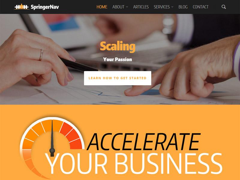 SpringerNav - Business and Marketing Website