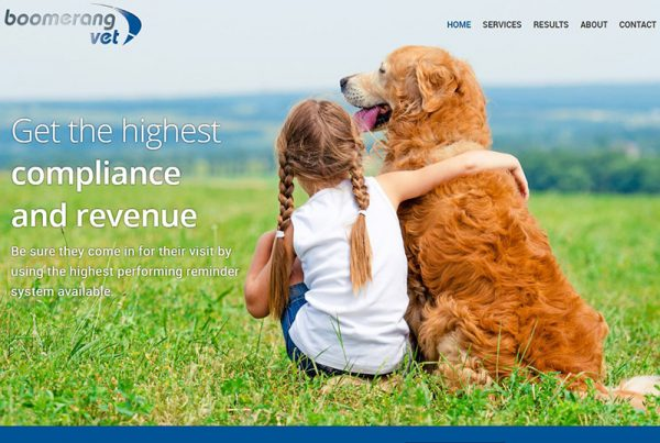 Boomerang Vet - Veterinary Reminder Strategy Website