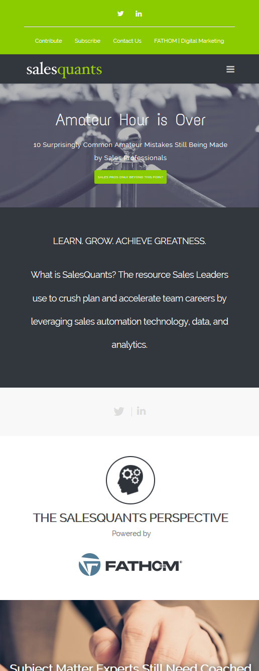 salesquants Mobile Responsive Design