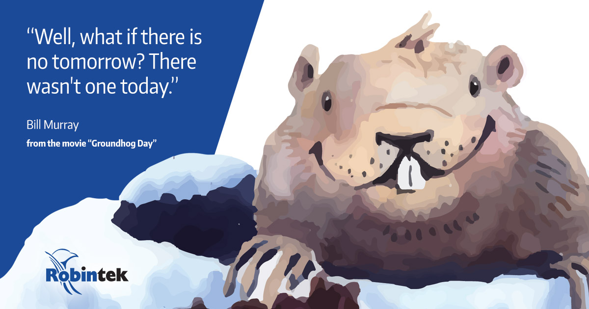 Web Design from Home on Groundhog Day in Columbus