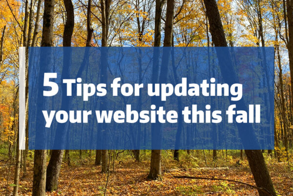 """Fall forest of yellow leaved trees with text """"5 tips for updating your website this fall"""""""